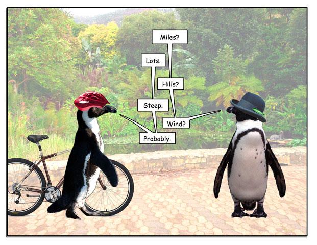 http://pengcognito.com/pengtoons/bikeevent-2.jpg