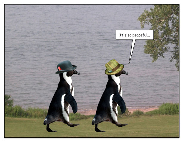 http://pengcognito.com/pengtoons/shorewalk-2.jpg