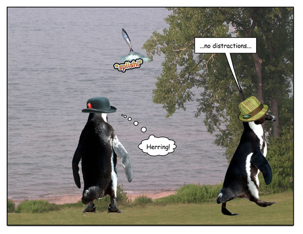 http://pengcognito.com/pengtoons/shorewalk-3.jpg